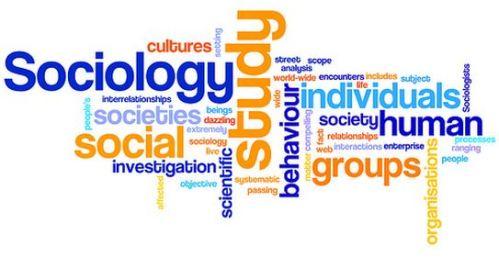 sociology_wordle