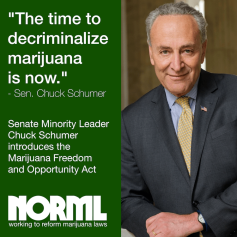 Schumer-introduces-Marijuana-Freedom-and-Opportunity-Act